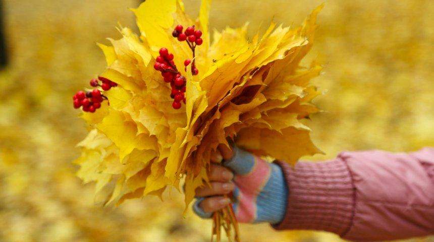 Букет осени из цветов и фруктов фото, купить садовые цветы в минске